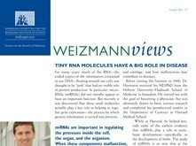 Tiny_RNA_Molecules_Have_a_Big_Role_in_Disease