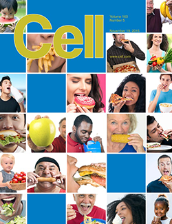 The research was featured on the cover of the journal Cell