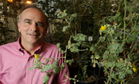 Scientists-urge-new-approaches-to-plant-research-Robert-last-thumb